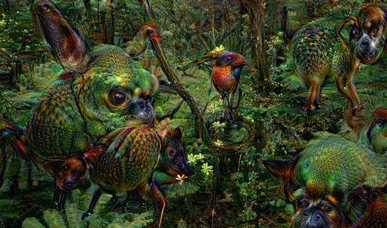 deep dream google 1