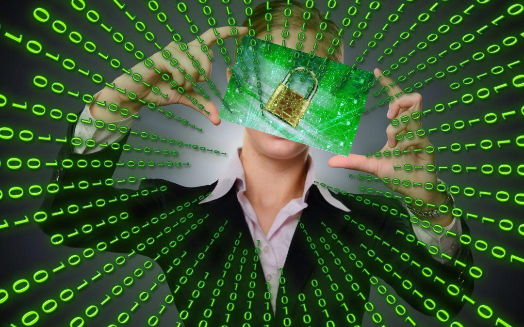 Virus Zeus : le malware qui vide votre compte en banque.
